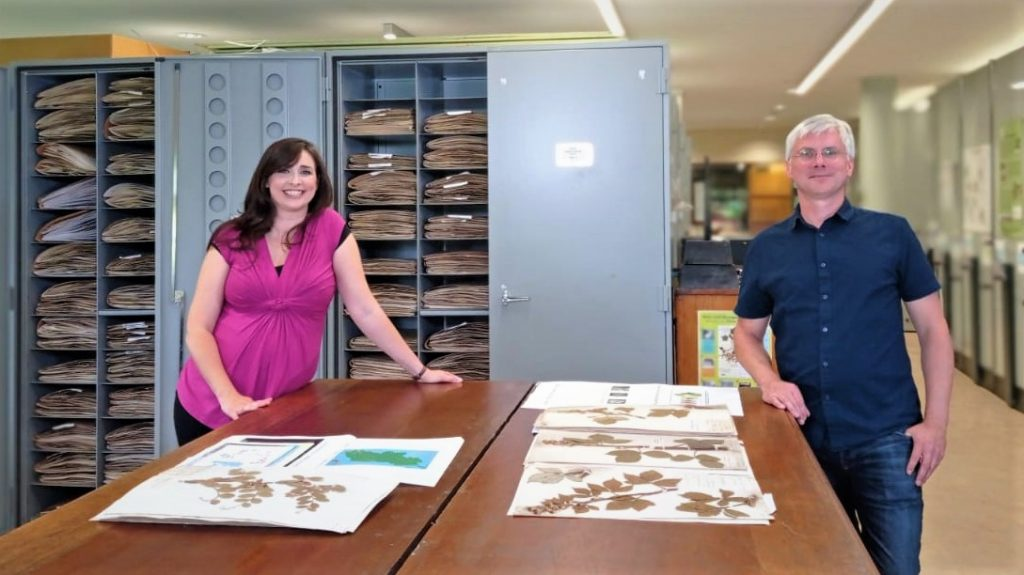 Biodiversity - Aoibhinn and Colin in Herbarium